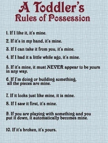 A Toddler Rules of Possession