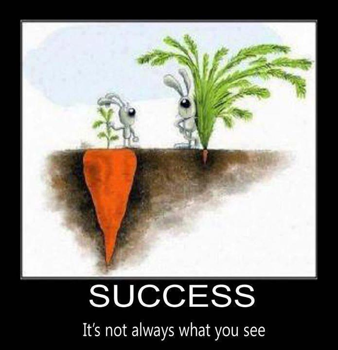 Success is not what it seems