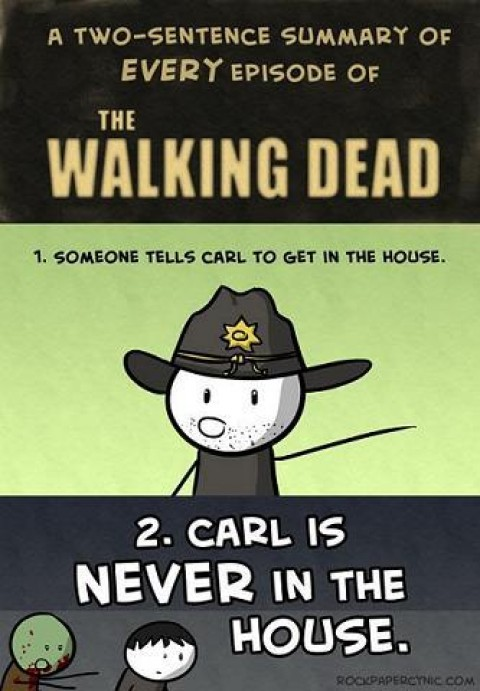 The Walking Dead Summary